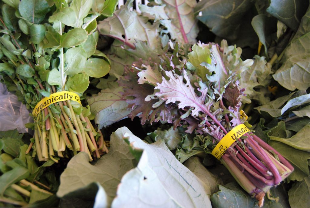 """Craft kale"" Sage Mountain Farm - Daily Harvest Express San Diego CSA"